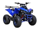 Подростковый квадроцикл KXD 008 Warrior (125 кубов) - Фото 0