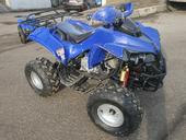 Подростковый квадроцикл KXD 008 Warrior (125 кубов) - Фото 13