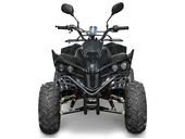 Подростковый квадроцикл KXD 008 Warrior (125 кубов) - Фото 4