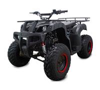 ATV Classic 200 (200 кубов)