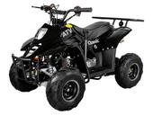 Электрический квадроцикл ATV Classic 6E 600W (600 ватт) - Фото 0