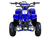 Электрический квадроцикл ATV Classic 6E 600W (600 ватт) - Фото 1