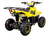 Электрический квадроцикл ATV Classic 6E 600W (600 ватт) - Фото 4