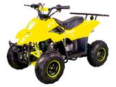 Электрический квадроцикл ATV Classic 6E 600W (600 ватт) - Фото 8