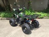 Подростковый бензиновый квадроцикл ATV Classic 7+ (125 куб. см.) - Фото 7