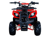 Подростковый бензиновый квадроцикл ATV Classic 7 (125 куб. см.) - Фото 17