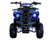 Подростковый бензиновый квадроцикл ATV Classic 7 (125 куб. см.) - Фото 1
