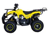 Подростковый бензиновый квадроцикл ATV Classic 7 (125 куб. см.) - Фото 7
