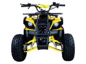 Подростковый бензиновый квадроцикл ATV Classic 8 (125 куб. см.) - Фото 9