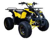 Подростковый бензиновый квадроцикл ATV Classic 8 (125 куб. см.) - Фото 10