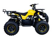 Подростковый бензиновый квадроцикл ATV Classic 8 (125 куб. см.) - Фото 11