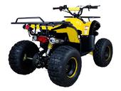 Подростковый бензиновый квадроцикл ATV Classic 8 (125 куб. см.) - Фото 12