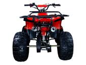 Подростковый бензиновый квадроцикл ATV Classic 8 (125 куб. см.) - Фото 21