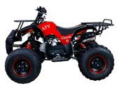 Подростковый бензиновый квадроцикл ATV Classic 8 (125 куб. см.) - Фото 23