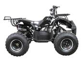 Подростковый бензиновый квадроцикл ATV Classic 8 (125 куб. см.) - Фото 27