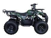 Подростковый бензиновый квадроцикл ATV Classic 8 (125 куб. см.) - Фото 35