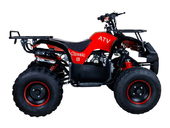 Подростковый бензиновый квадроцикл ATV Classic 8 (125 куб. см.) - Фото 3