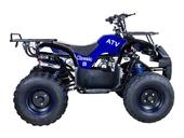 Подростковый бензиновый квадроцикл ATV Classic 8 (125 куб. см.) - Фото 43