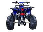 Подростковый бензиновый квадроцикл ATV Classic 8 (125 куб. см.) - Фото 45