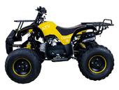 Подростковый бензиновый квадроцикл ATV Classic 8 (125 куб. см.) - Фото 7