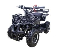 ATV Classic mini (50 кубов)
