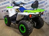 Квадроцикл Avantis Forester 200 LUX (2020) - Фото 2