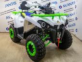 Квадроцикл Avantis Forester 200 LUX (2020) - Фото 5