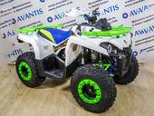 Квадроцикл Avantis Forester 200 (2020) - Фото 6