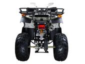 Квадроцикл Avantis Hunter 150 Lux (бензиновый 150 куб. см.) - Фото 4