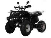 Квадроцикл Avantis Hunter 150 (бензиновый 150 куб. см.) - Фото 0
