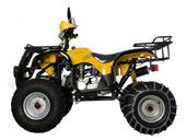 Квадроцикл Avantis Hunter 150 (бензиновый 150 куб. см.) - Фото 15