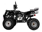 Квадроцикл Avantis Hunter 150 (бензиновый 150 куб. см.) - Фото 23