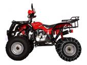 Квадроцикл Avantis Hunter 150 (бензиновый 150 куб. см.) - Фото 29