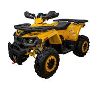 Avantis Hunter 200 Big Lux (200 кубов)