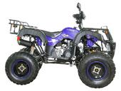 Квадроцикл Avantis Hunter 200 LUX (бензиновый 200 куб. см.) - Фото 11