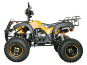 Квадроцикл Avantis Hunter 200 LUX (бензиновый 200 куб. см.) - Фото 15