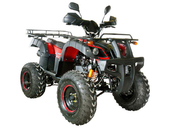 Квадроцикл Avantis Hunter 200 LUX (бензиновый 200 куб. см.) - Фото 2