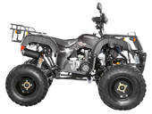 Квадроцикл Avantis Hunter 200 LUX (бензиновый 200 куб. см.) - Фото 3