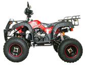 Квадроцикл Avantis Hunter 200 LUX (бензиновый 200 куб. см.) - Фото 7