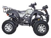 Квадроцикл Avantis Hunter 250 Premium (бензиновый 250 куб. см.) - Фото 3