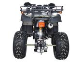 Квадроцикл Avantis Hunter 250 Premium (бензиновый 250 куб. см.) - Фото 5