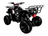 Подростковый квадроцикл Avantis Hunter 7 Lite (125 кубов) - Фото 22