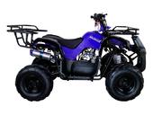 Подростковый квадроцикл Avantis Hunter 7 Lite (125 кубов) - Фото 27