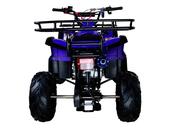 Подростковый квадроцикл Avantis Hunter 7 Lite (125 кубов) - Фото 29