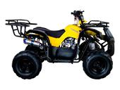 Подростковый квадроцикл Avantis Hunter 7 Lite (125 кубов) - Фото 3