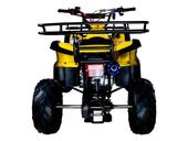 Подростковый квадроцикл Avantis Hunter 7 Lite (125 кубов) - Фото 5