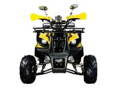 Подростковый квадроцикл Avantis Hunter 7+ (бензиновый 125 куб. см.) - Фото 9