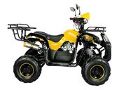 Подростковый квадроцикл Avantis Hunter 7+ (бензиновый 125 куб. см.) - Фото 11