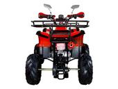 Подростковый квадроцикл Avantis Hunter 7+ (бензиновый 125 куб. см.) - Фото 13