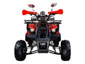 Подростковый квадроцикл Avantis Hunter 7+ (бензиновый 125 куб. см.) - Фото 17